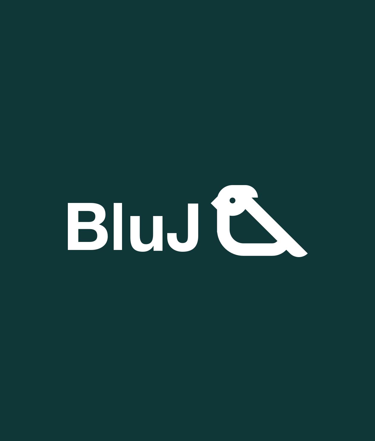Bluj - Branding